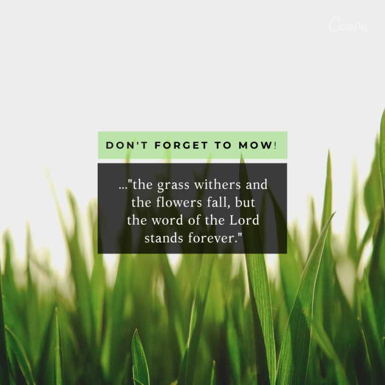 Don't Forget to Mow!