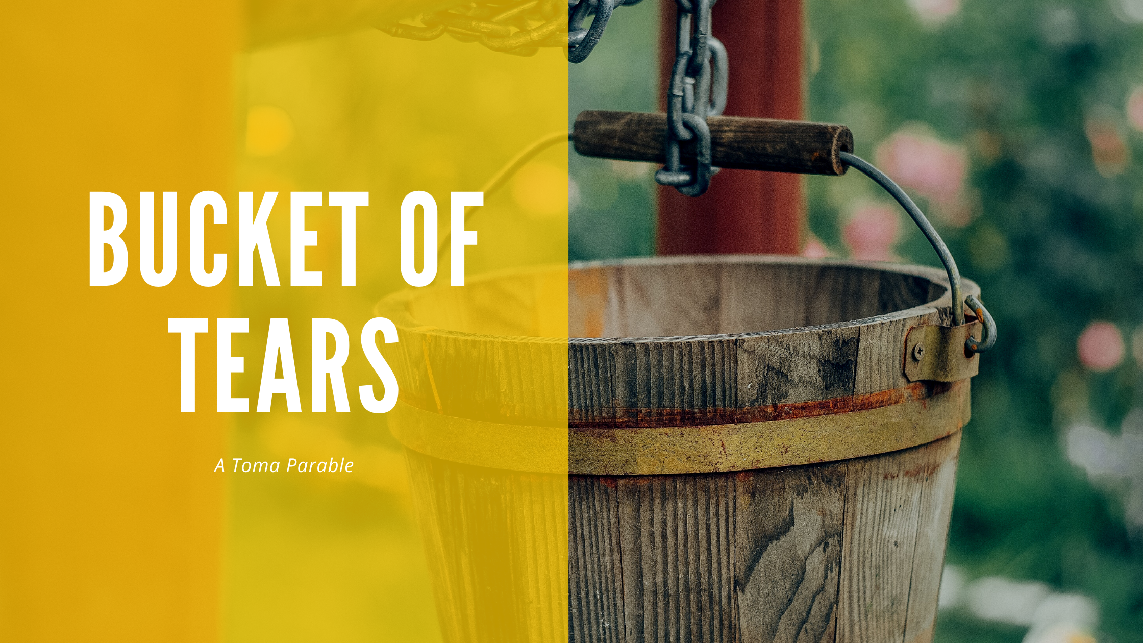 Read more about the article Bucket of Tears
